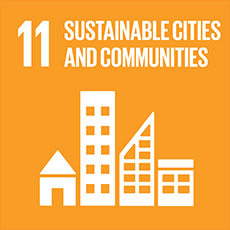 SDG 11 Make cities inclusive, safe, resilient and sustainable