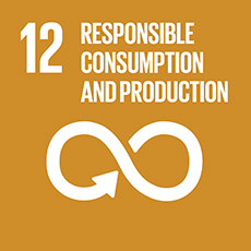 SDG 12 Ensure sustainable consumption and production patterns