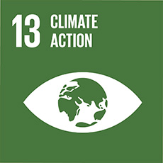 SDG 13 Take urgent action to combat climate change and its impacts