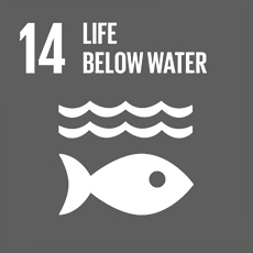 SDG 14 Conserve and sustainably use the oceans, seas and marine resources