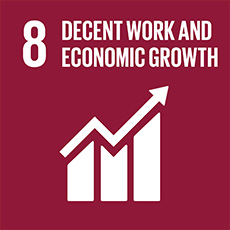 SDG 8 Promote inclusive and sustainable economic growth, employment and decent work for all