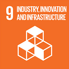 SDG 9 Build resilient infrastructure, promote sustainable industrialization and foster innovation